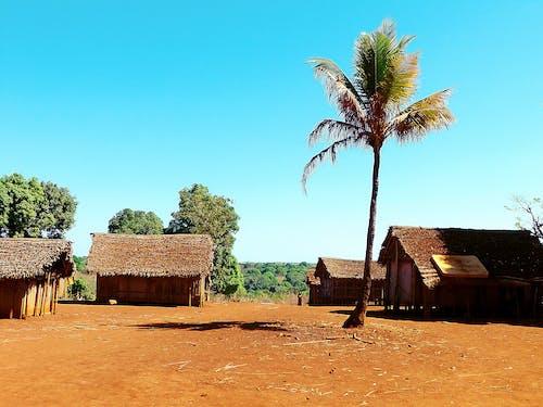 村庄传统, 美丽的风景, 藍天, 马尔加什 的 免费素材照片