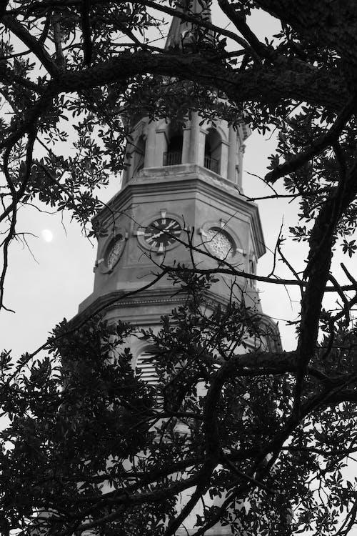 Photos gratuites de clocher, église