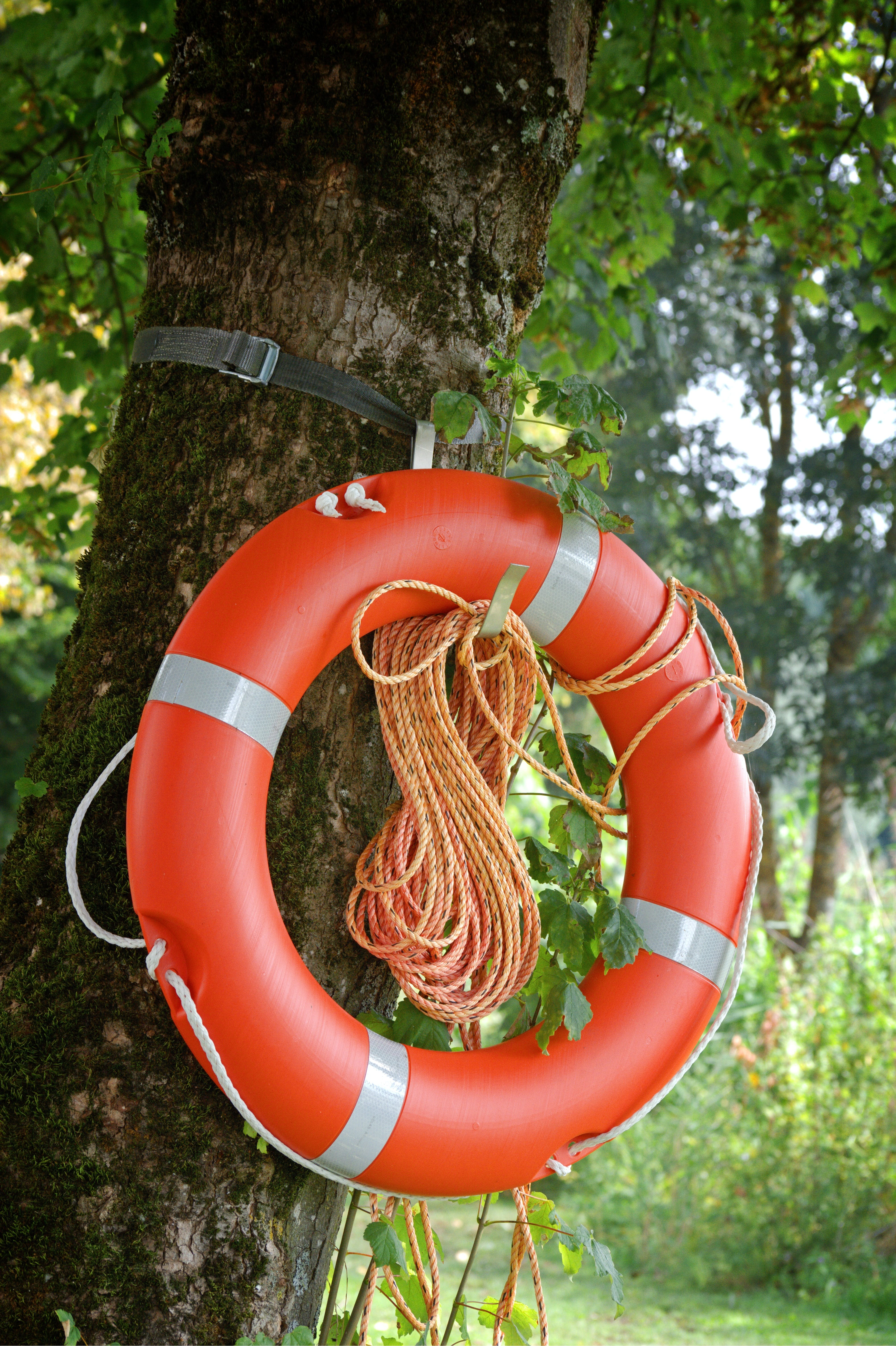 Free stock photo of red, emergency, lifebelt, rescue