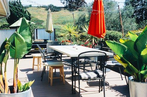 Kostnadsfri bild av terrass, trädgård