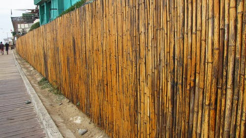 Gratis arkivbilde med bambus veggen, gå, gate