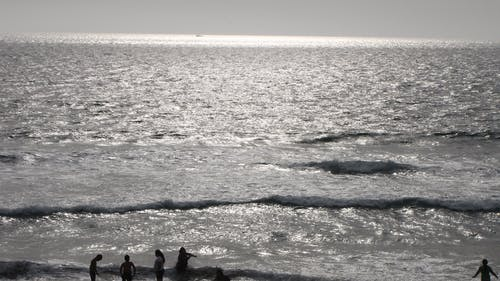 Gratis arkivbilde med folk til sjøs, sjø, strand, strandgrensen