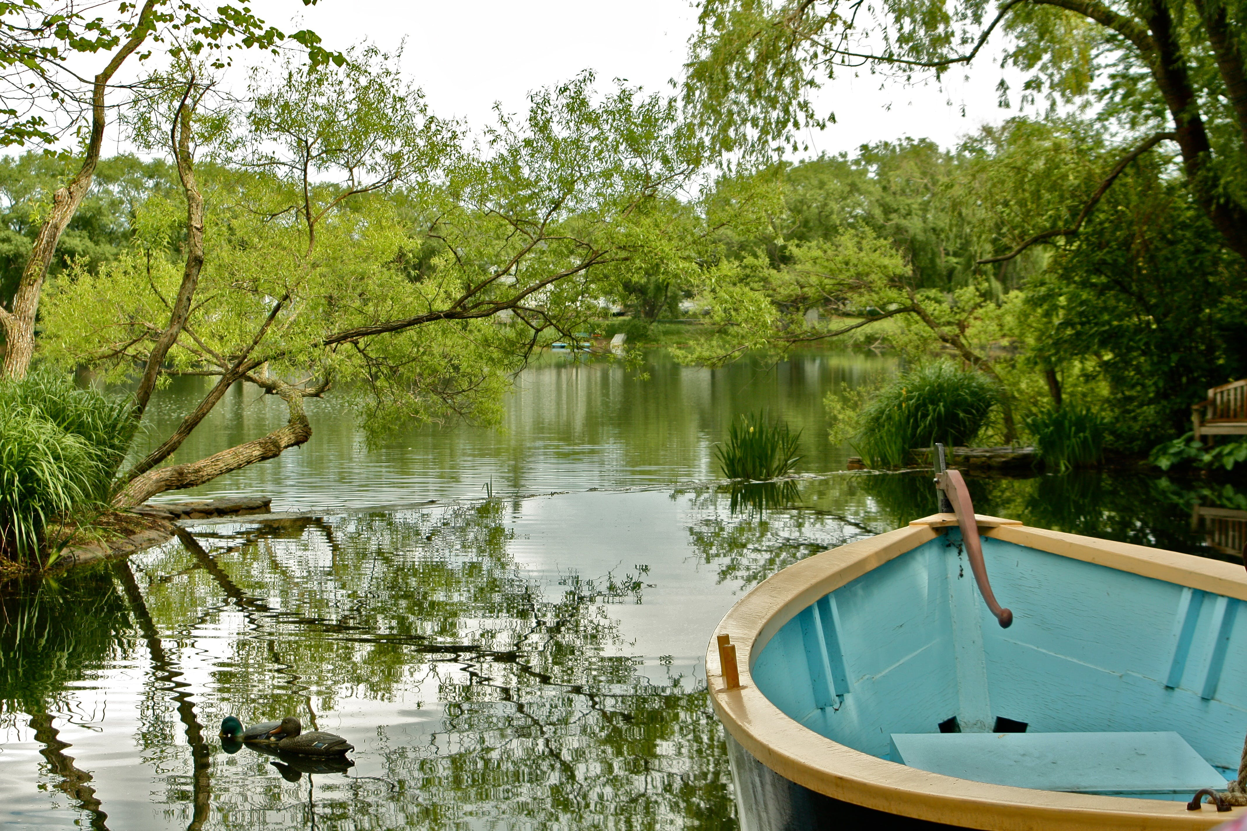 Free stock photo of boat, calm waters, lake, pond