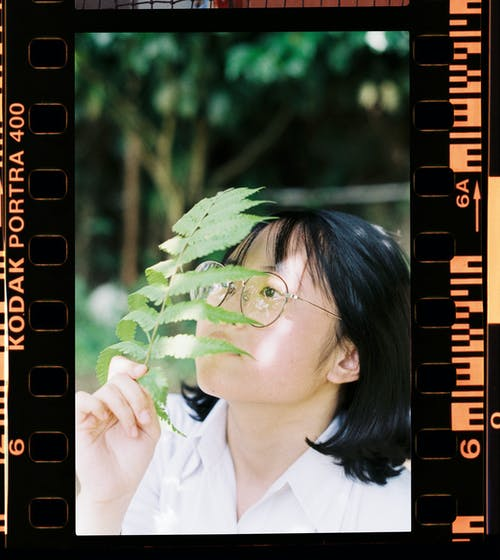 Close-up Photography of Woman Covering Her Face With Fern Plant