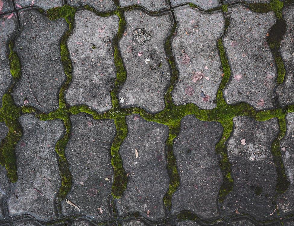 asfalt, dlaždica, mach