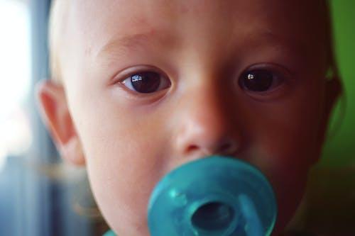Free stock photo of boy, child, close up, destroir