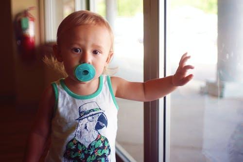 Free stock photo of boy, child, destroir, destroirphotography