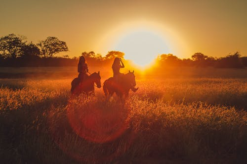 Silhouette Photo of Two Persons Riding Horses