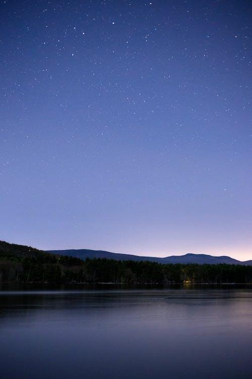 Foto profissional grátis de água, alvorecer, amanhecer, árvores