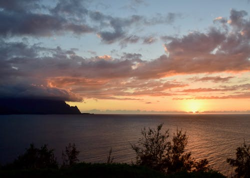 Foto stok gratis hawaii, kauai, lapangan golf, makai