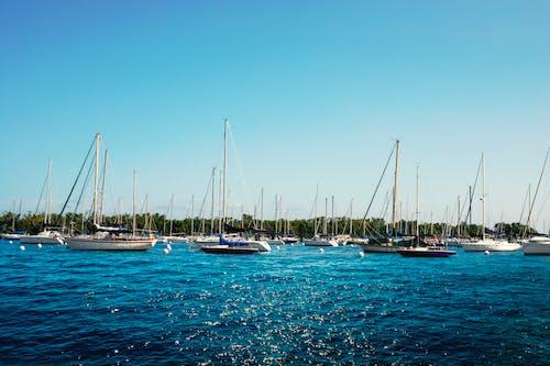 Fotobanka sbezplatnými fotkami na tému člny, oblasť zálivu, oceán, pláž
