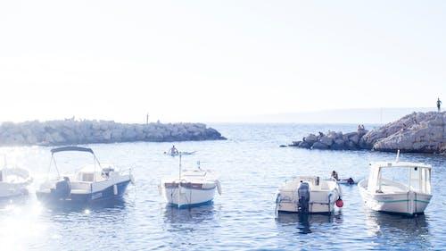 Ảnh lưu trữ miễn phí về biển, Hải cảng, marseille, Nước