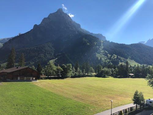 çıkmak, çim, dağ, gün ışığı içeren Ücretsiz stok fotoğraf