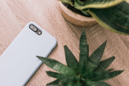 Mobile Phone Beside A Plant