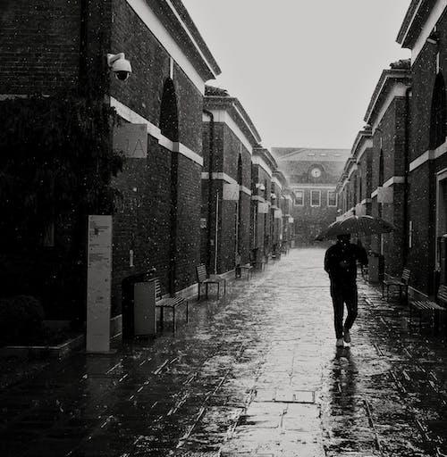 Free stock photo of bad weather, mono, rain