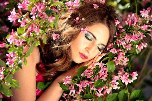 Gratis lagerfoto af blomst, blomster, blomstrende, busk