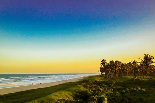 Foto stok gratis berselancar, depan pantai, gubuk pantai, jam emas