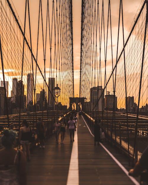 Kostnadsfri bild av arkitektur, gående, gångbro, gångstig