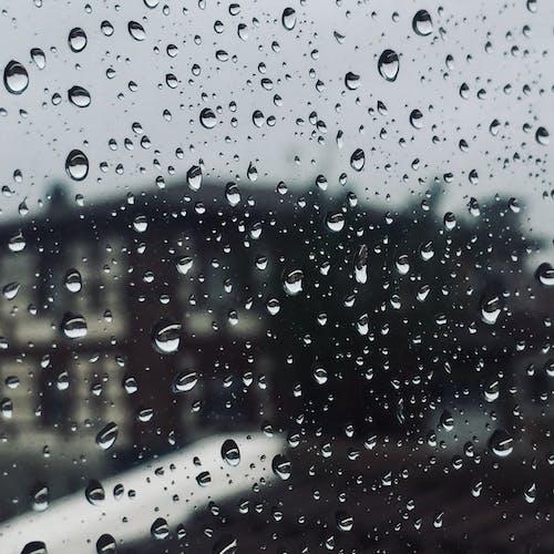 冬季, 漆黑, 玻璃窗, 秋季 的 免費圖庫相片