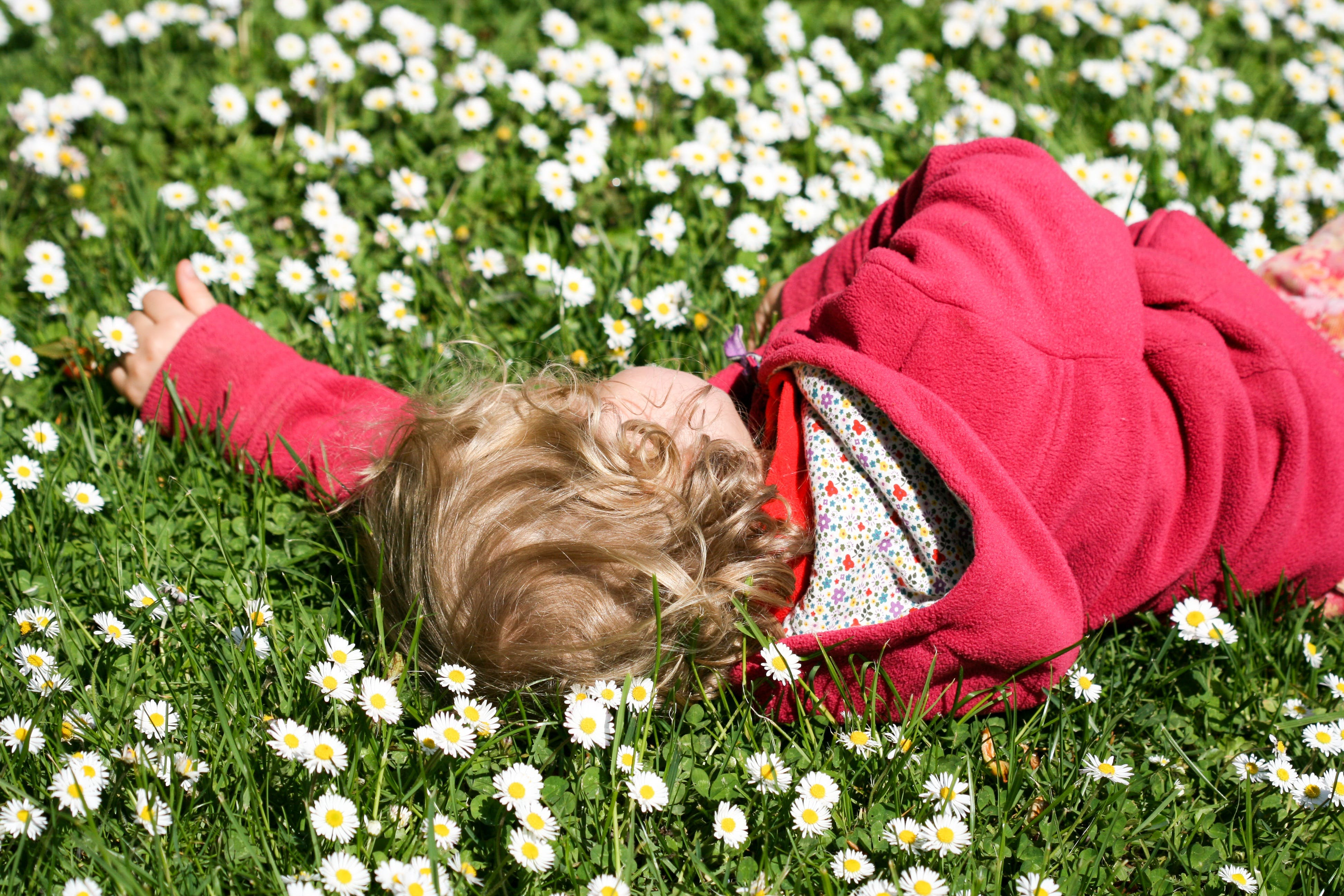 Free stock photo of meadow, spring, relax, rest