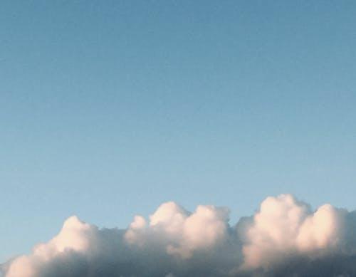春天, 藍天, 雲 的 免費圖庫相片