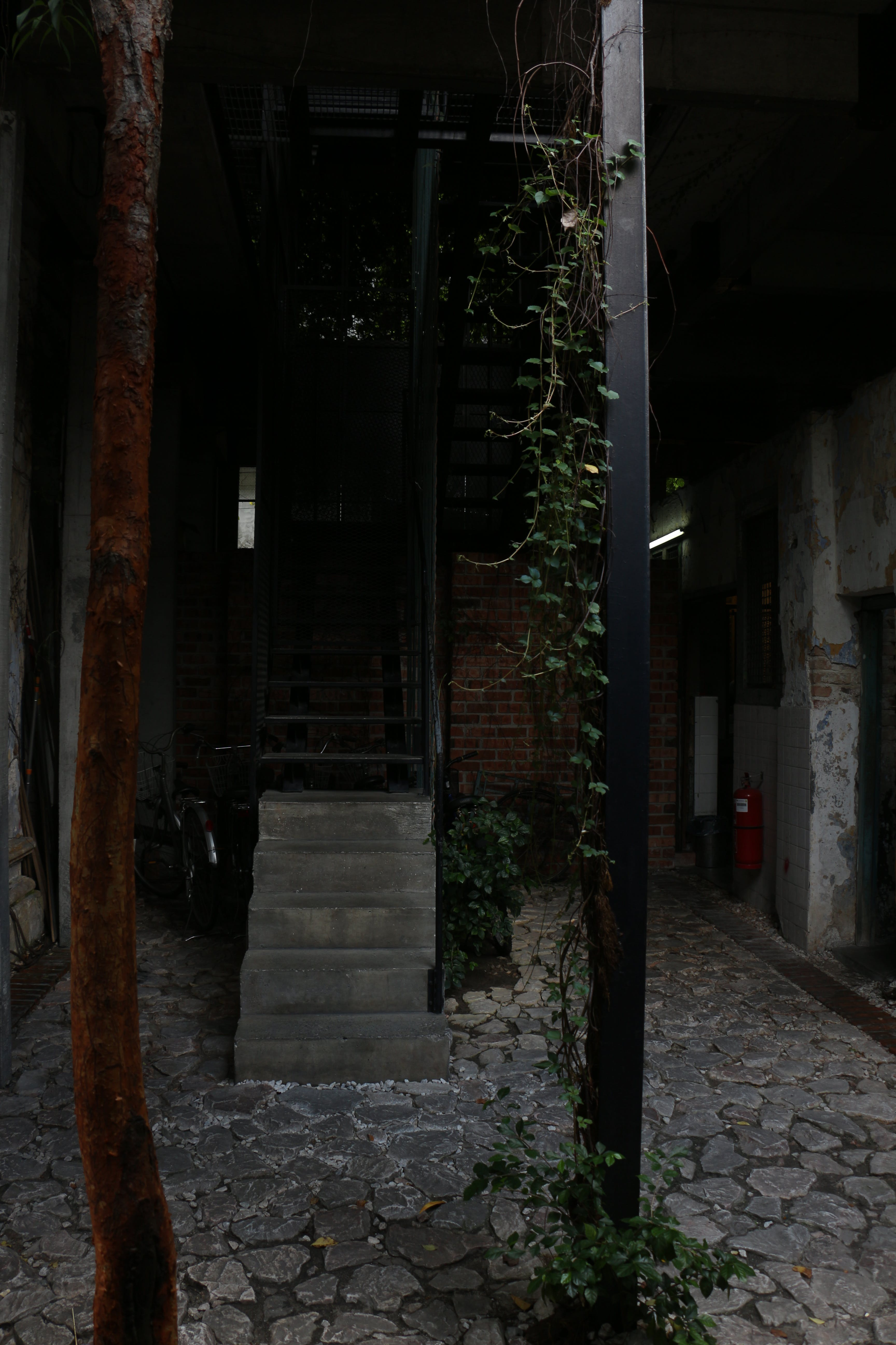 Free stock photo of alley, stairs