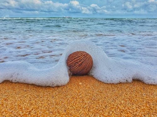 斯里蘭卡, 海灘, 運動 的 免费素材照片