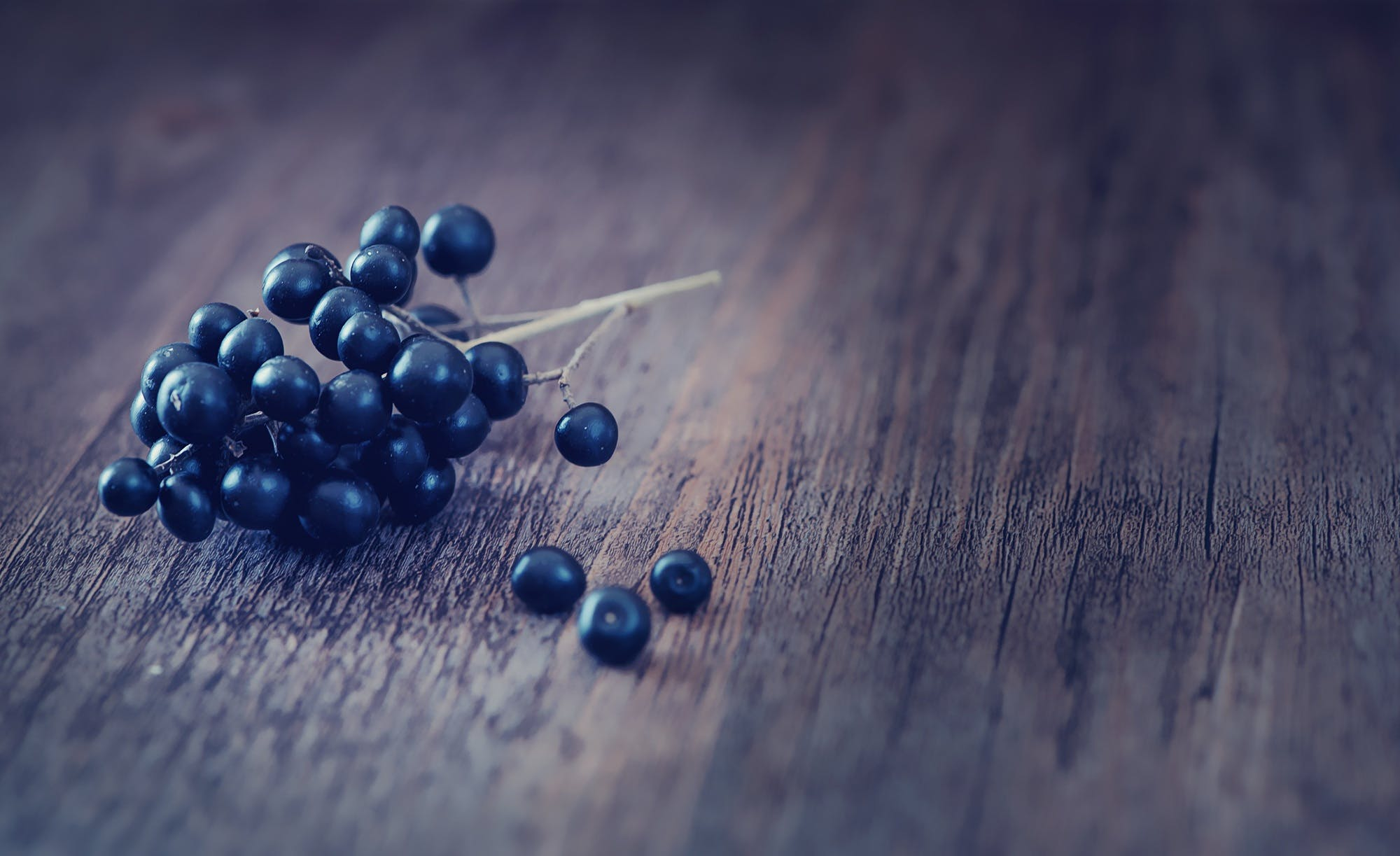 Selective Focus Photography of Blue Berry on Gray Surface
