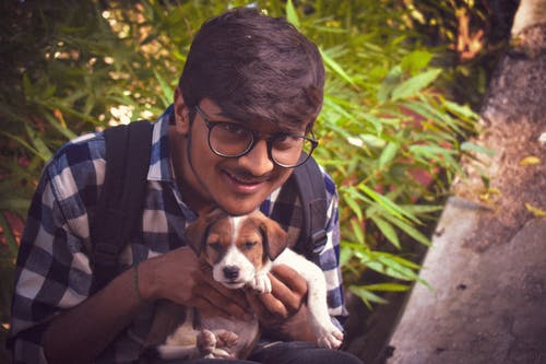 개가있는 소년, 새끼 강아지, 애완용 개, 오케이 bhargav의 무료 스톡 사진