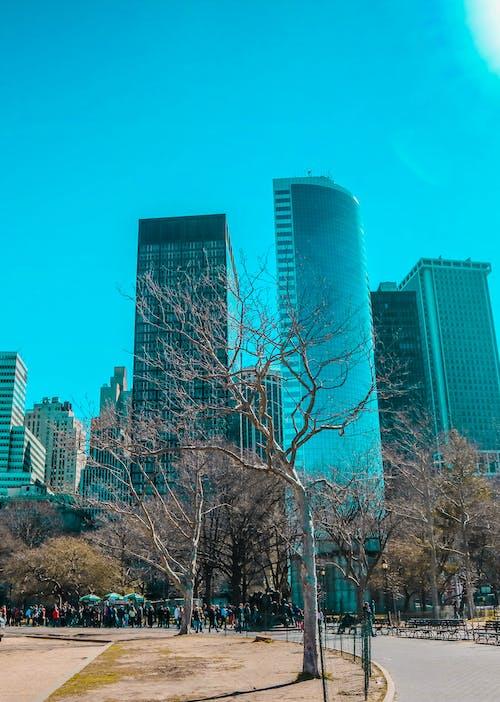 Gratis lagerfoto af amerika, arkitektur, blå, by