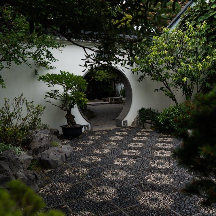 beauty, Chinese, chinese garden