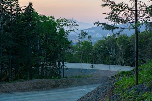 Základová fotografie zdarma na téma jízdní kolo, krajina, krása, les