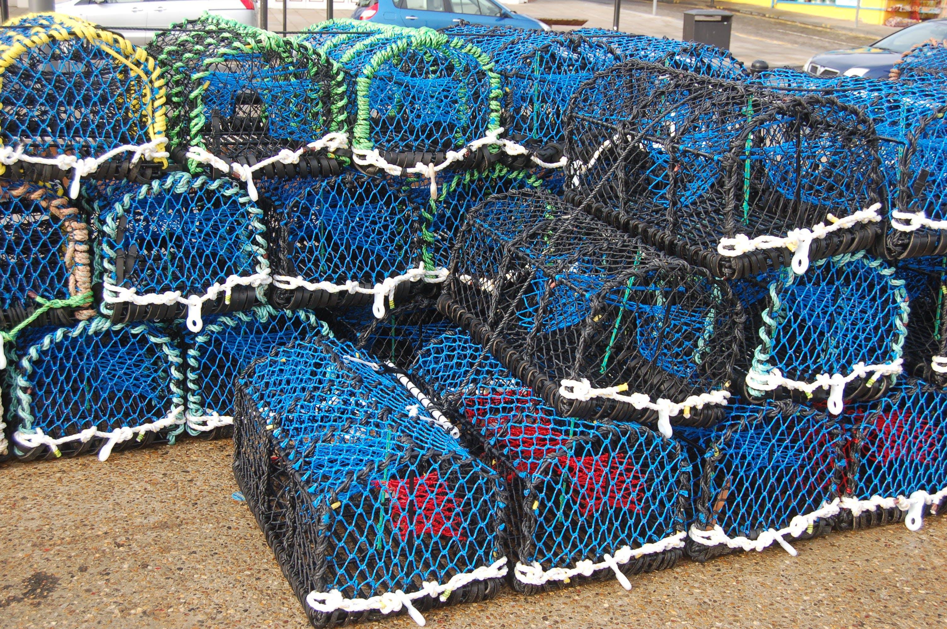 Free stock photo of ocean, fisherman, fishing nets