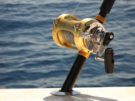 Free stock photo of fishing, ocean, deep sea fishing, penn reel