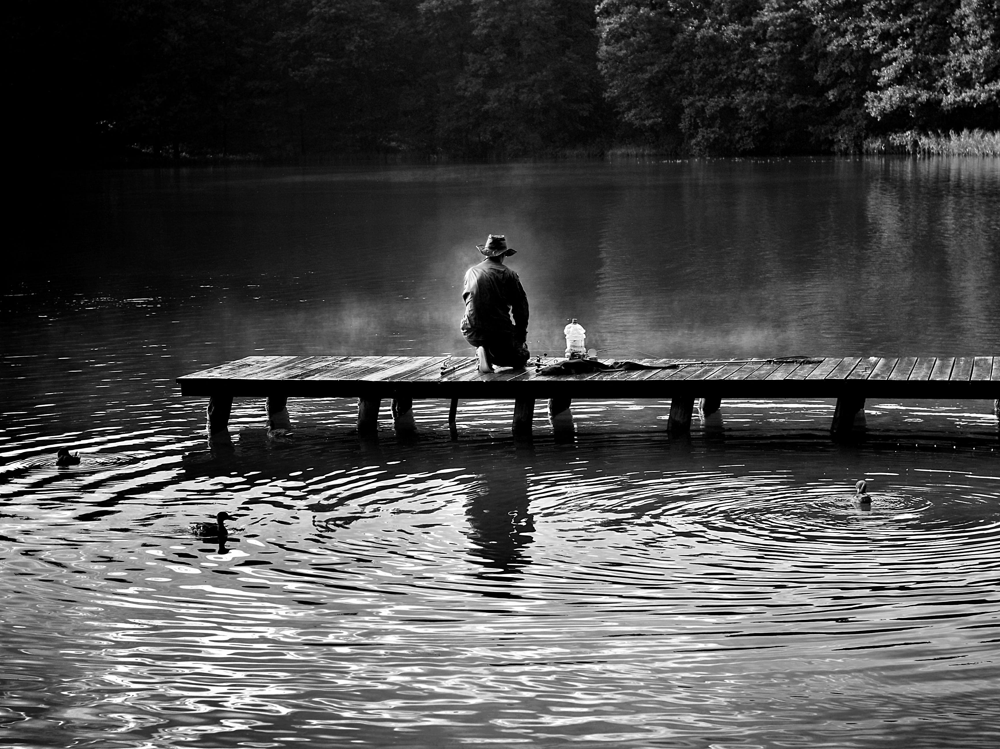 Free stock photo of fishing, light, black-and-white, dawn