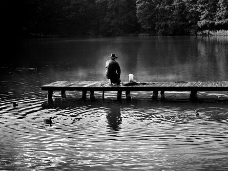 Free stock photo of fishing, light, black-and-white, dawn