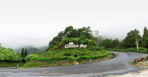 Безкоштовне стокове фото на тему «hagiang, moutains, В'єтнам, дерево»