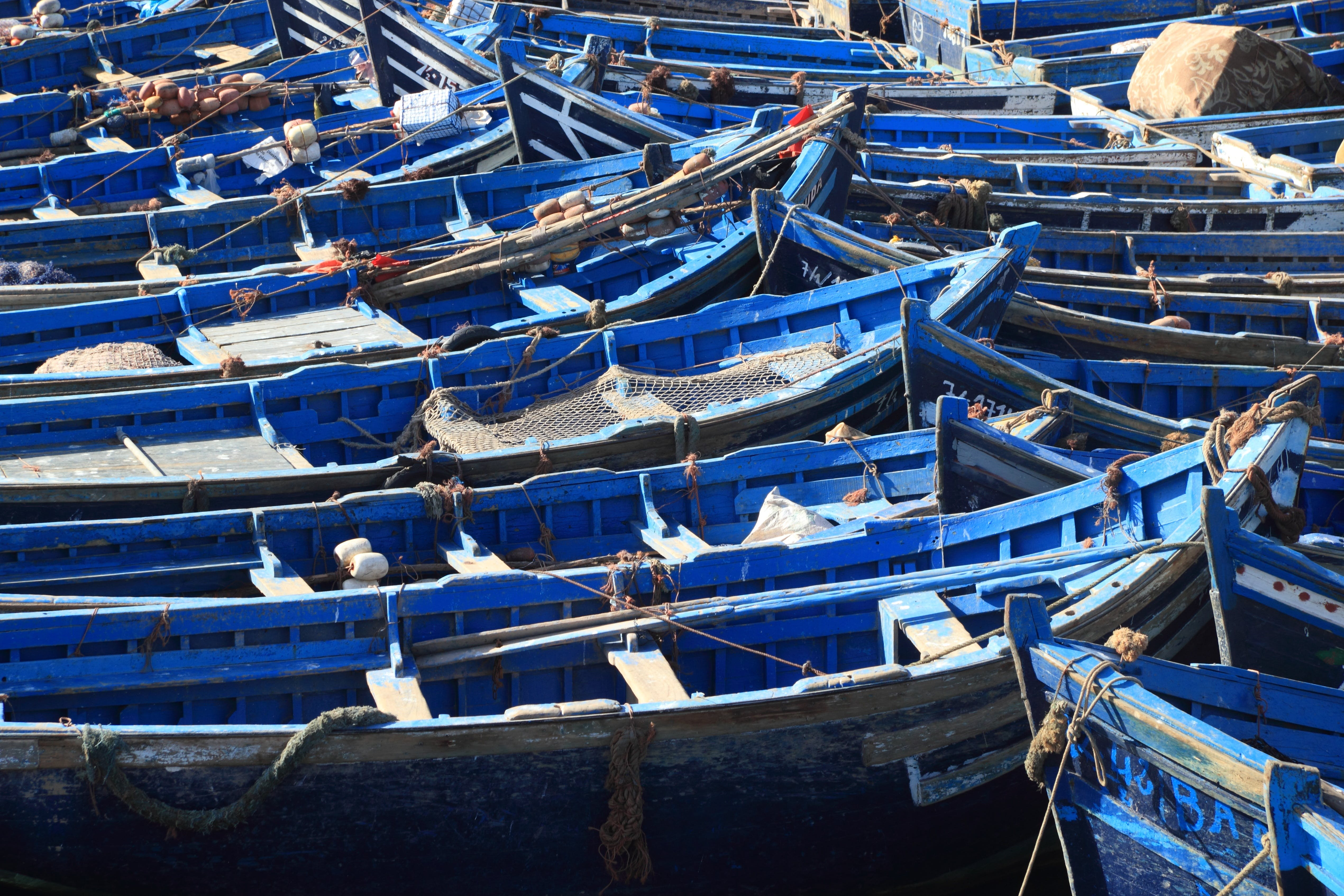 Free stock photo of fishing, boats, morocco, essaouira