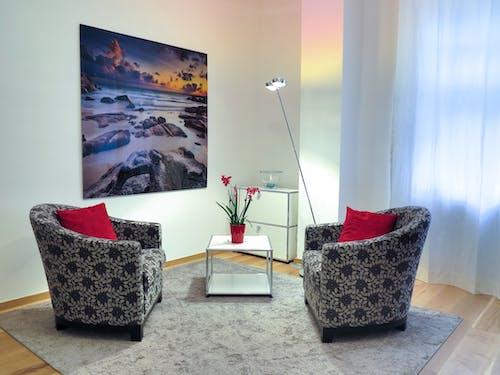 Immagine gratuita di allestimento, appartamento, comfort, contemporaneo