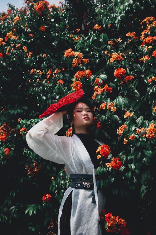 Foto d'estoc gratuïta de colors, colors brillants, drivenbydiversity, flors