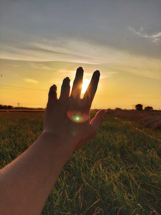 大自然, 日出, 日落 的 免費圖庫相片