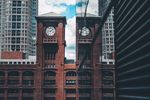 คลังภาพถ่ายฟรี ของ การสะท้อน, ชิคาโก, ตัวเมือง, นาฬิกา