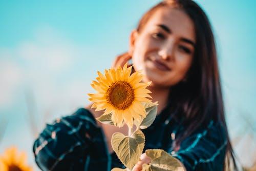 Gratis lagerfoto af blade, blomst, close-up, dybde