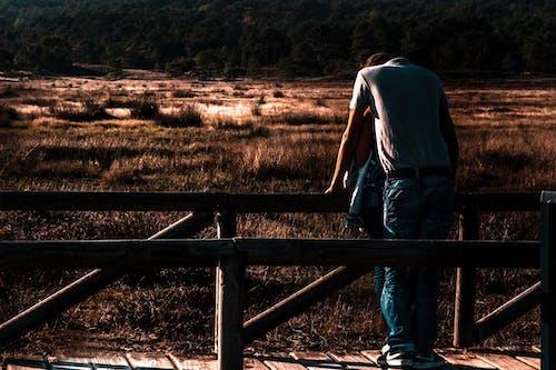 Gratis lagerfoto af bane, fægte, glæde, hegn