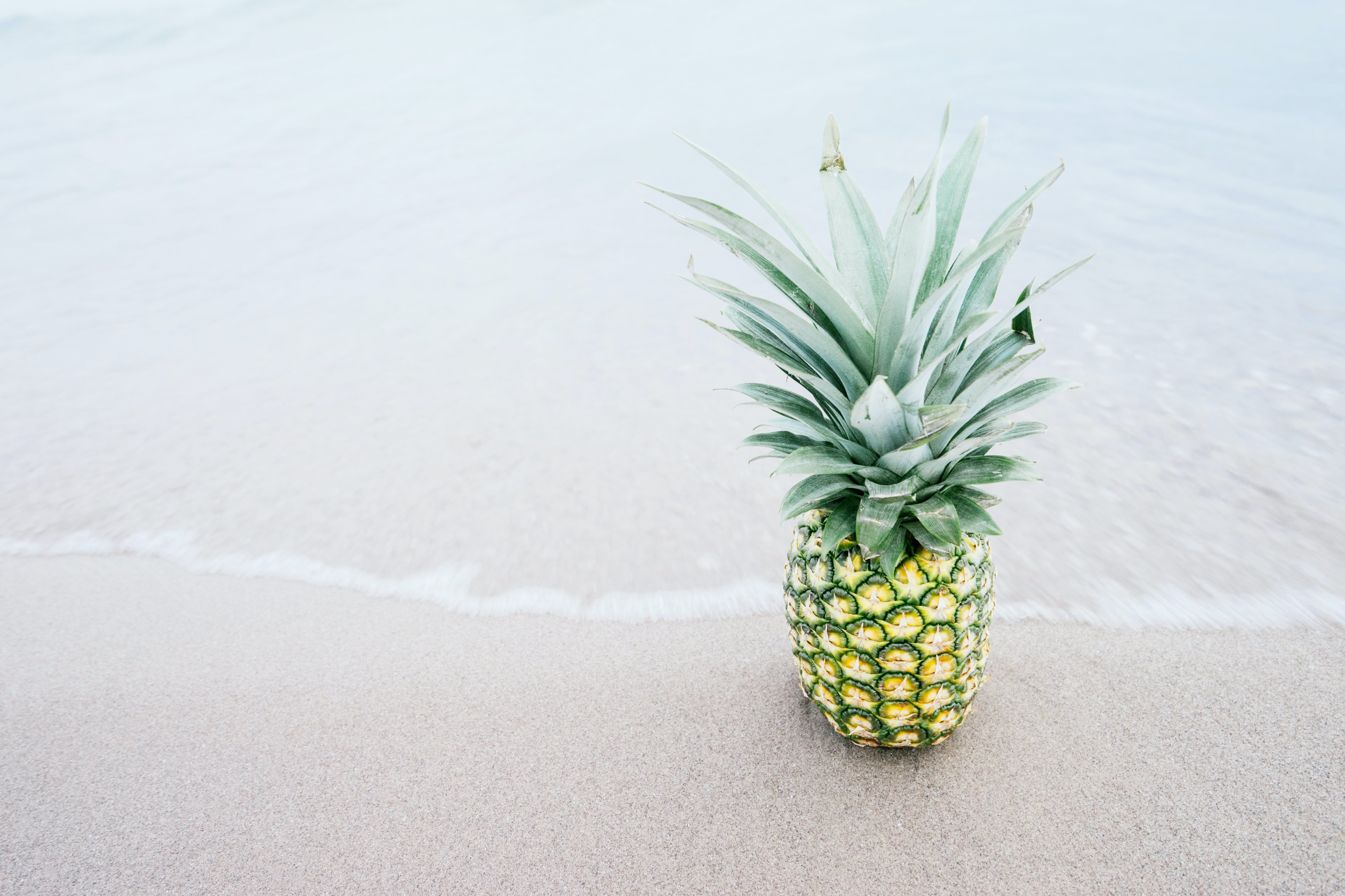 Pineapple Fruit on Shore