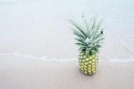 food, beach, sand
