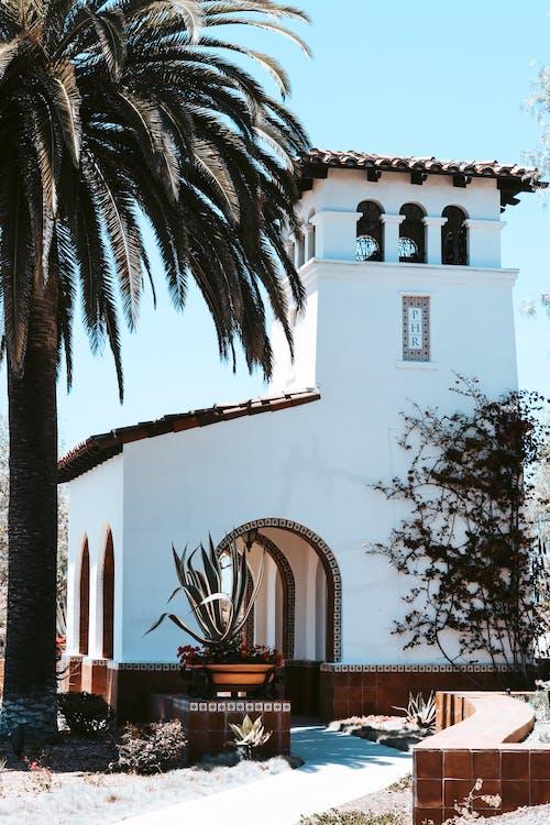 Foto stok gratis biru, california, di luar