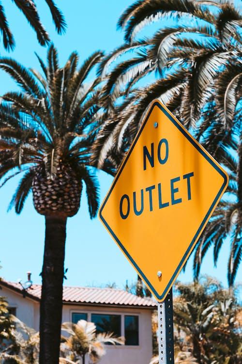 Foto stok gratis baja california, biru, california