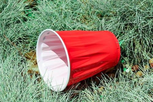Foto stok gratis cangkir, hijau, kesenian, merah