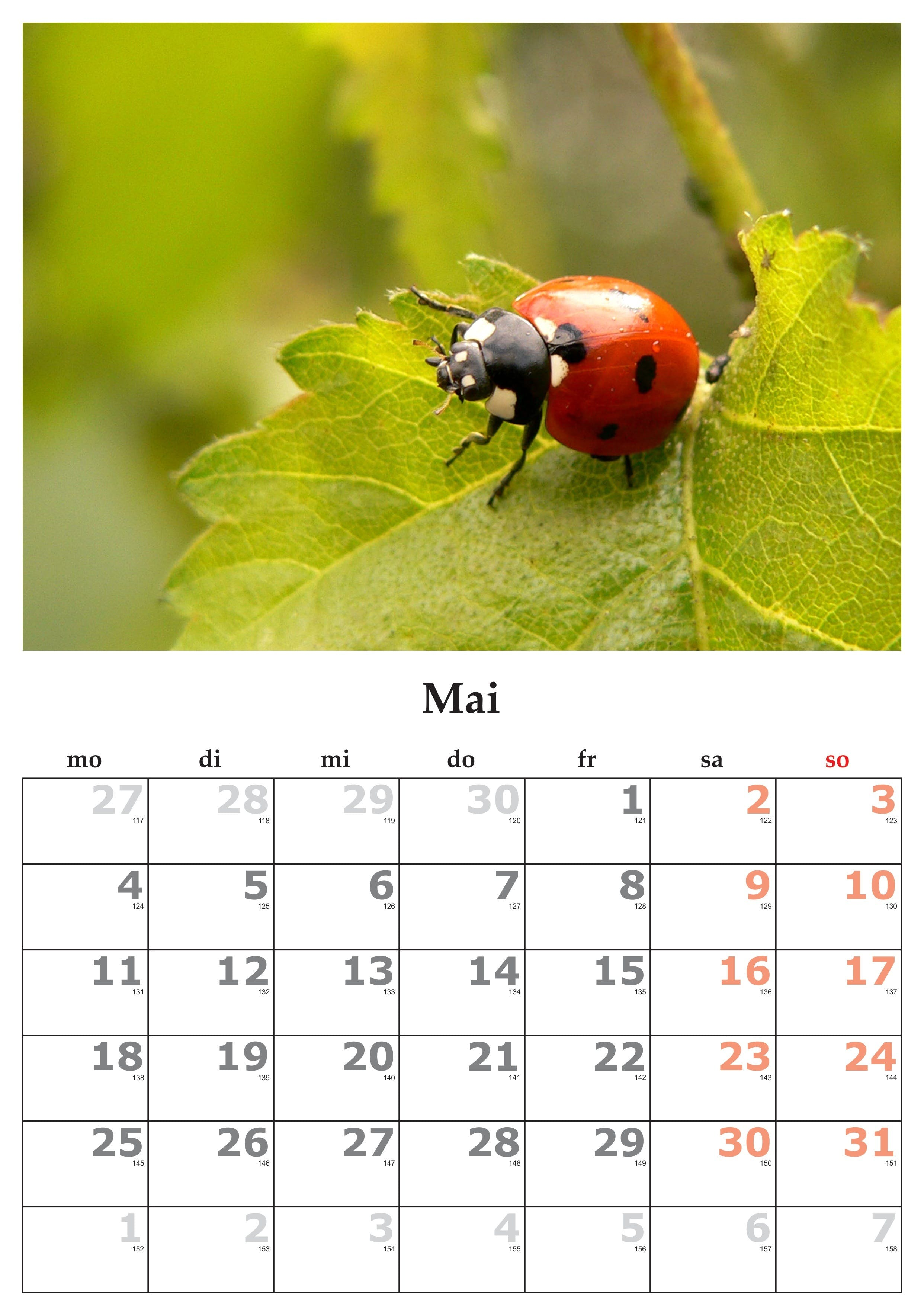 Free stock photo of calendar, may, may 2015, month